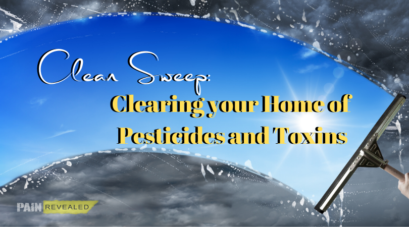 Clean Sweep: Clearing your Home of Pesticides and Toxins